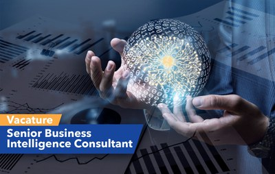 Senior Business Intelligence Consultant