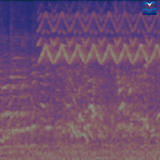 SERVAL Open Ears AI machine listening