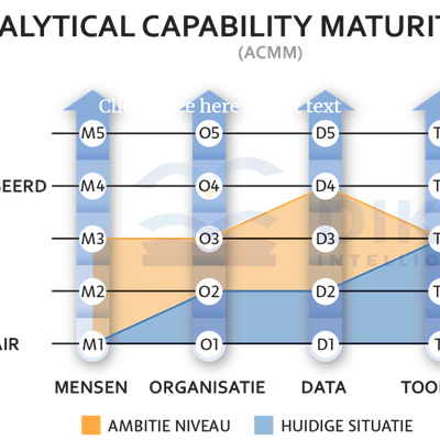 Analytical Capability Maturity Model (ACMM)