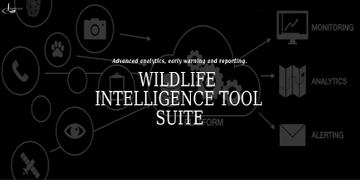 Sensing Clues Wildlife Intelligence
